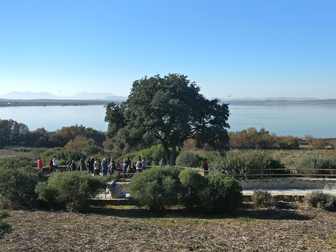 Guided tour in Cerro del Palo viewpoint